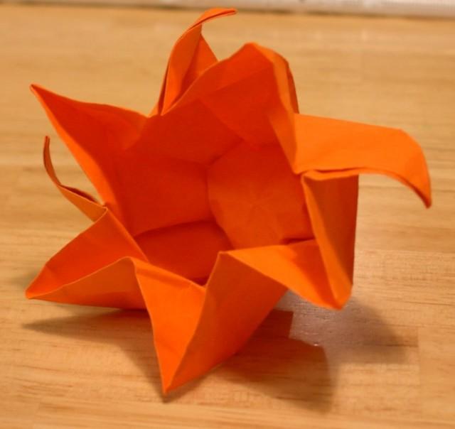 Twist box, type 4.  Unfolded.